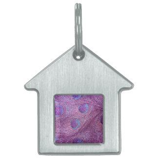 Plumas púrpuras en colores pastel del pavo real de placa de mascota