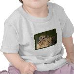 Plumas rizadas camiseta