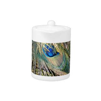Plumas rústicas del Peafowl del color