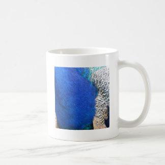 plumas verdaderas del pavo real de collor taza de café