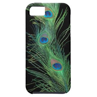 Plumas verdes con negro iPhone 5 carcasas