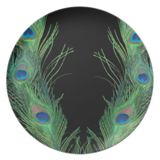 Plumas verdes con negro platos de comidas