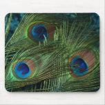 Plumas verdes del pavo real alfombrilla de ratones
