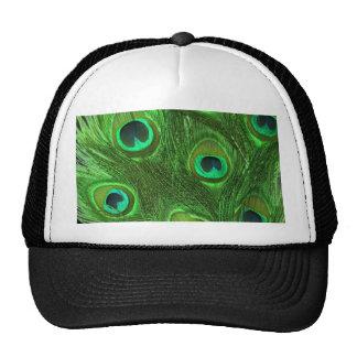 Plumas verdes del pavo real en negro gorros