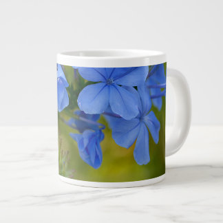 Plumbago - Blue Summer Flowers Picture Large Coffee Mug