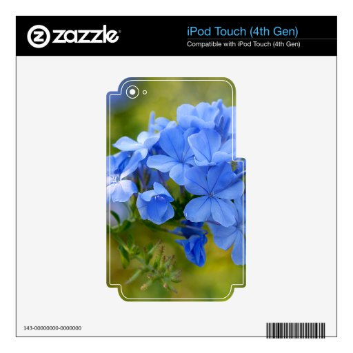 Plumbago - Blue Summer Flowers Skins For iPod Touch 4G