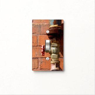 Plumbers light switch plate