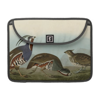 Plumed & Thick-legged Partridge Sleeves For MacBook Pro