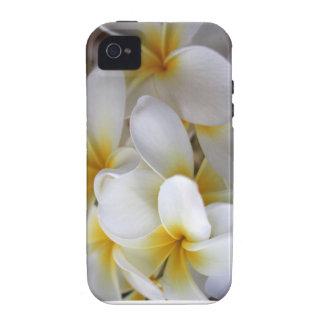 Plumera iPhone Case iPhone 4 Cases