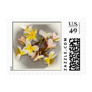 Plumeria Bouquet II Postage Stamp