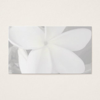 plumeria business card background