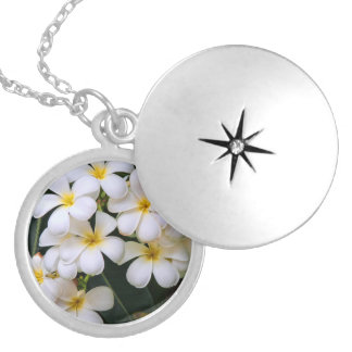 Plumeria Cascade Tropical Flowers Silver Plated Necklace