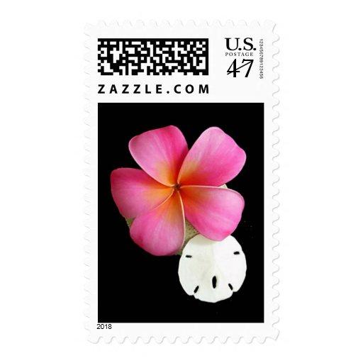 Plumeria - Cotton Candy on Shells Postage