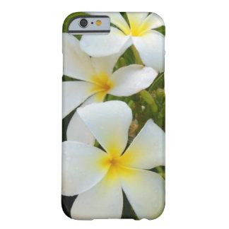 Plumeria de Hawaii Funda Para iPhone 6 Barely There