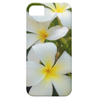 Plumeria de Hawaii iPhone 5 Fundas