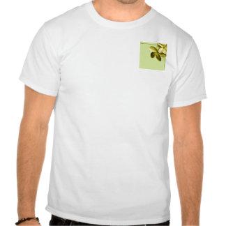 Plumeria del verde y del amarillo de mar camisetas