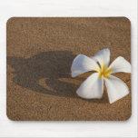 Plumeria en la playa arenosa, Maui, Hawaii, los E. Alfombrillas De Raton