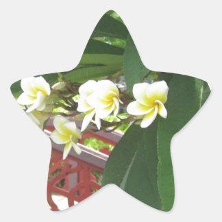Plumeria Exotique Calcomanías Forma De Estrellaes