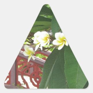 Plumeria Exotique Pegatinas De Trianguladas