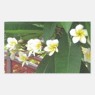 Plumeria Exotique Rectangular Altavoz
