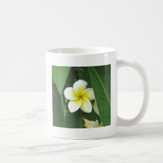 Plumeria Extreme Coffee Mug