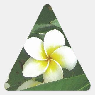 Plumeria Extreme Triangle Sticker