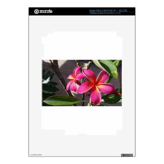 Plumeria Falls Decals For iPad 3