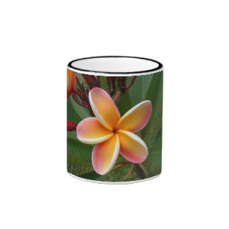 Plumeria Flower - Oahu Hawaii Ringer Mug