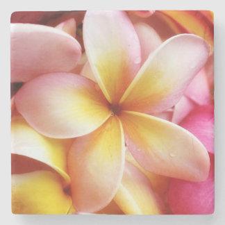 Plumeria Flowers Hawaiian Frangipani Floral Stone Coaster