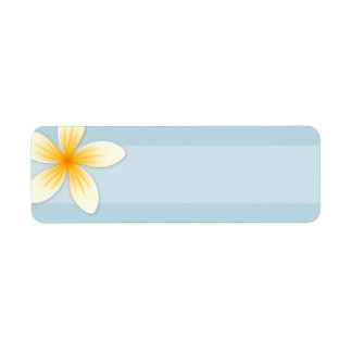 Plumeria Frangipani flower on pale sky blue blank Label