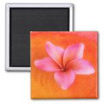 Plumeria Frangipani Hawaii Flower Customized Blank 2 Inch Square Magnet