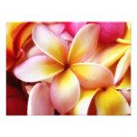 Plumeria Frangipani Hawaii Flower Customized Blank Photo Print