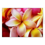 Plumeria Frangipani Hawaii Flower Customized Blank Stationery Note Card