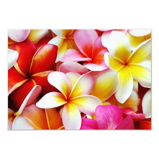 Plumeria Frangipani Hawaii Flower Customized Card
