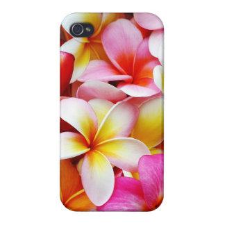 Plumeria Frangipani Hawaii Flower Customized iPhone 4/4S Case