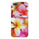 Plumeria Frangipani Hawaii Flower Customized iPhone 5/5S Cases