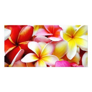 Plumeria Frangipani Hawaii Flower Customized Custom Photo Card