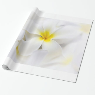 Plumeria Frangipani Hawaii Flower Flowers Template Gift Wrap Paper