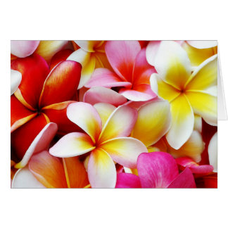 Plumeria Frangipani Hawaii Flower Hawaiian Flowers Greeting Cards