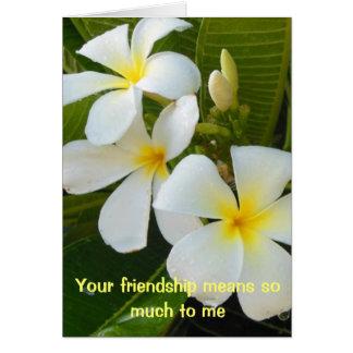 Plumeria Friendship Poem Card