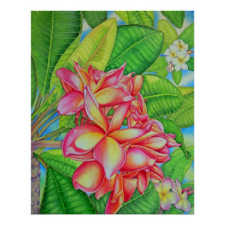 Plumeria Garden Poster