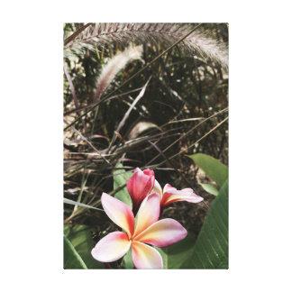 Plumeria hawaiano e hierba de fuente de Tejas Impresión En Lienzo
