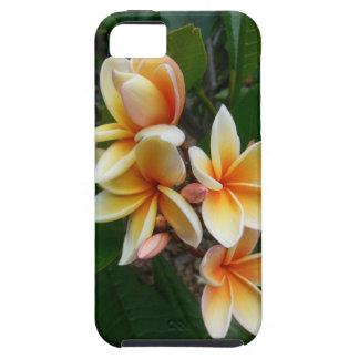Plumeria hawaiano funda para iPhone 5 tough