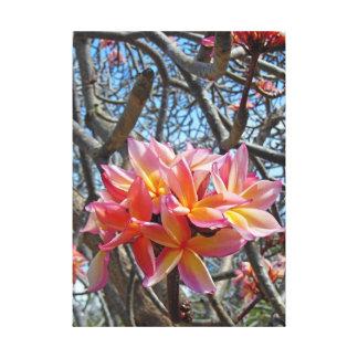 Plumeria hawaiano impresión en lienzo