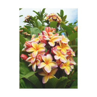 Plumeria hawaiano impresion en lona