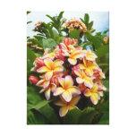 Plumeria hawaiano impresiones en lienzo estiradas