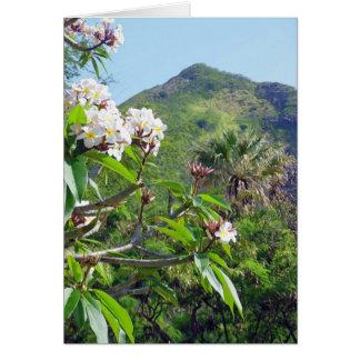 Plumeria hawaiano tarjetas