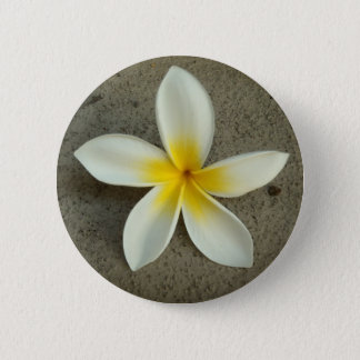Plumeria hawaii flower button