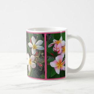 Plumeria Hawaiian Flowers in Collage on Mug