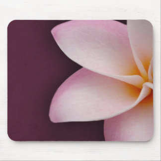 Plumeria in pink mouse pad